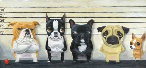 The Line Up - 13 x 19  Boston Terrier, Frenchie, Pug, English Bulldog Art Print. $33.00, via Etsy.