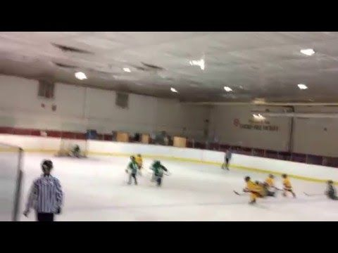 Tyke Hockey Goals - Armen Khachikian #16