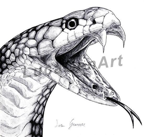 Ahnliche Artikel Wie Snake Cobra Handgemachtes Design Instant Download Digitaldruck In Bleistift Holzkohle Und China Realistisches Design Auf Etsy Snake Drawing Snake Art Snake Sketch