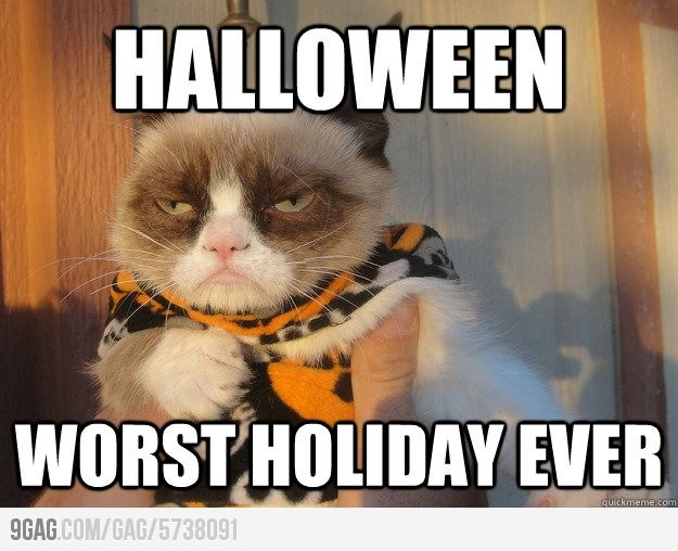 costumes and candy are overrated - Funny Cat Halloween