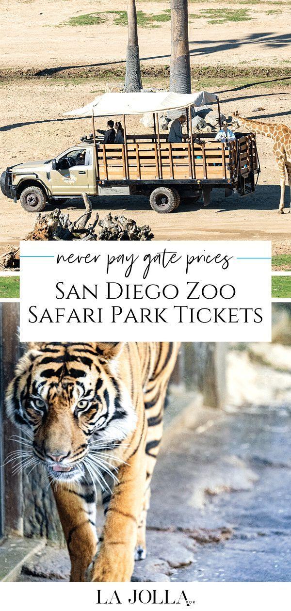 How To Buy Discount San Diego Zoo Safari Park Tickets Top 14 Ways La Jolla Mom San Diego Zoo Safari Park Safari Park San Diego Zoo
