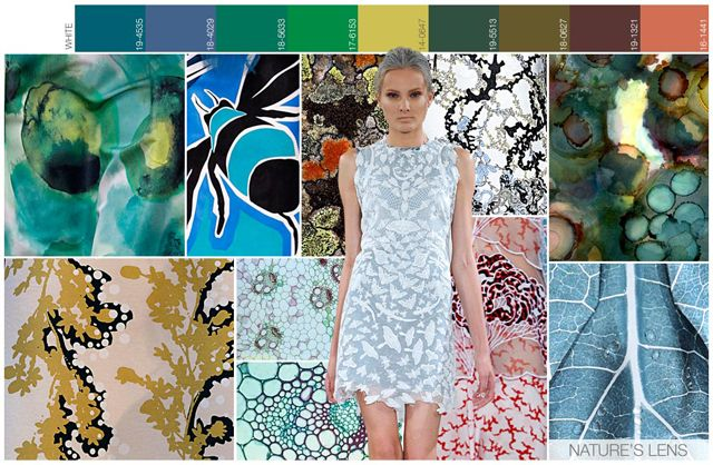 s/s 2016 women's art for trend theme: Nature's Lens mood
