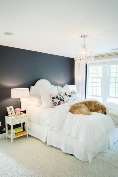 Caitlin Wilson Navy Fleur Pillows | The room is nice, but the cutest thing is the Golden Retriever!
