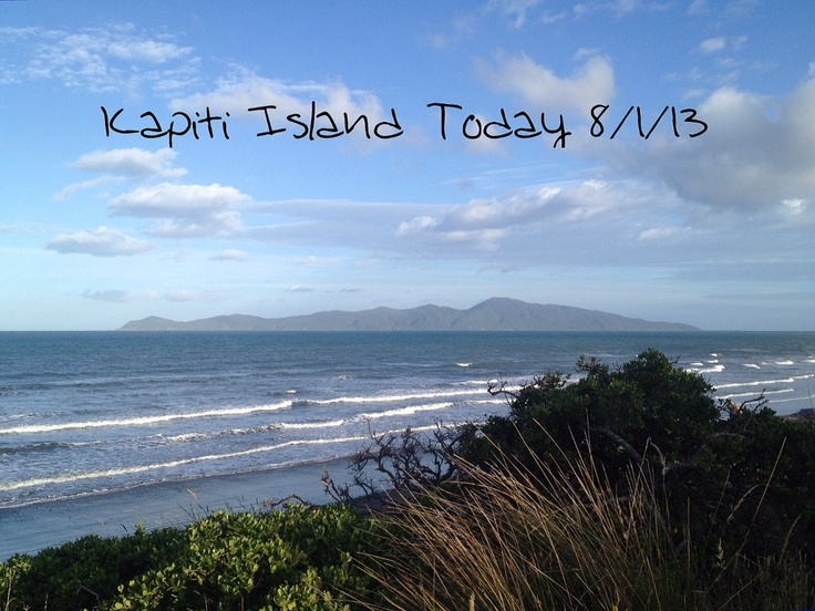 Not So Super Scottish Mummy: Kapiti Island Today 8/1/13 (Lovely Hubby behind the lens today)