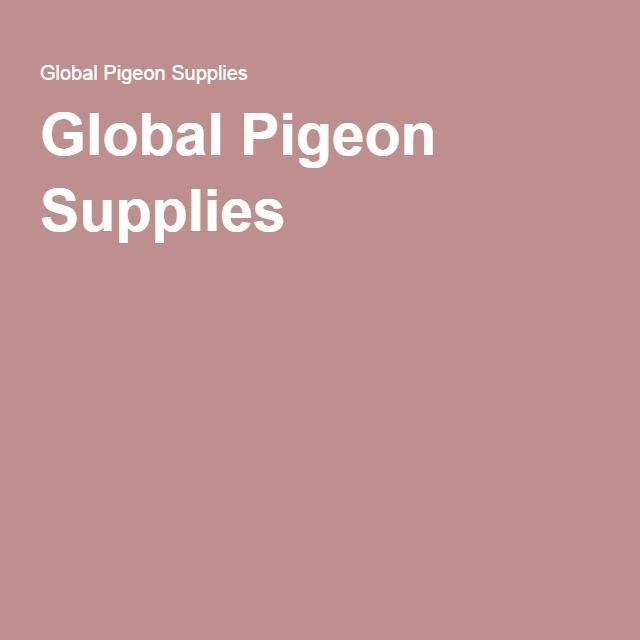 Global Pigeon Supplies