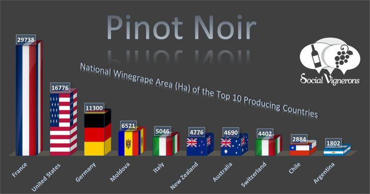 Top 10 Countries Vineyard Surface Area Pinot Noir Social Vignerons