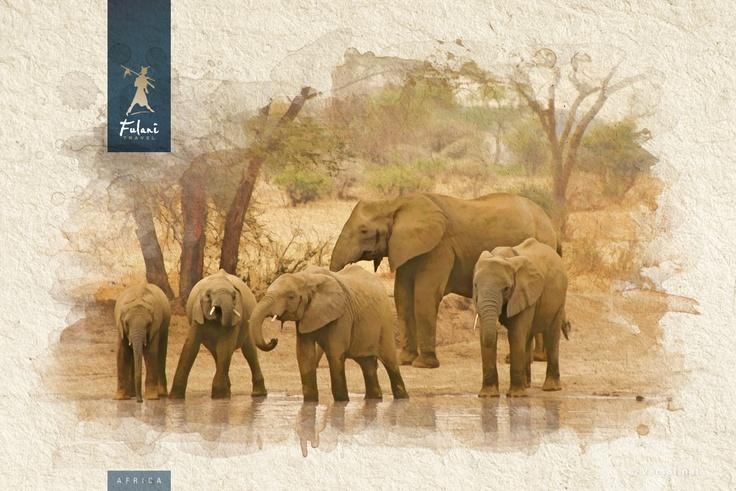 Tanzania - Infografía para catálogo de viajes