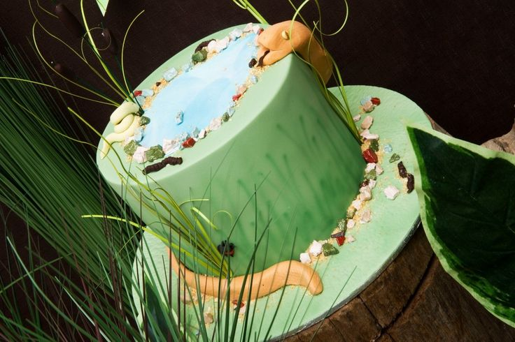 REPTILE PARTY CAKE