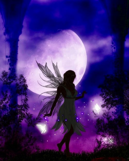Night fairies