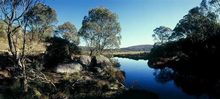 Barrington Tops World Heritage Wilderness kids family animals farm river holiday accommodation cottage farmhouse farmstay https://www.facebook.com/pages/MANSFIELD-COTTAGE-BARRINGTON-Barrington-Tops-Holiday-Accommodation/341811962165 E - jill.perram@bigpond.com
