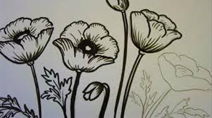 Risultati immagini per disegni papaveri