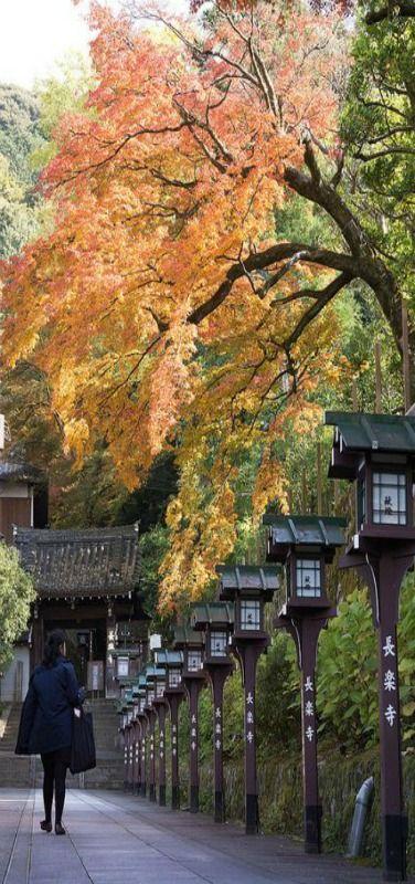 Path to the temple - Entrance of Chorakuji temple, Kyoto, (長楽寺) Japan by Yoshi Shimamura