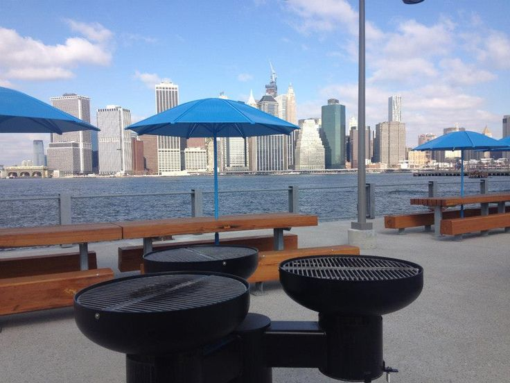 Brooklyn Bridge Park has grills...GRILLS IN NYC FOR FREE