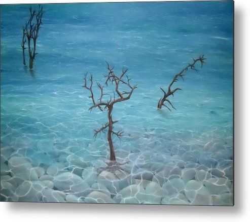 Metal Print,  water,coastal,scene,seascape,nature,pebbles,stones,trees,ocean,seaside,shore,shallow,transparent,clear,trunks,roots,standing,rocks,calm,peaceful,dead,old,blue,surreal,fantasy,beautiful,image,fine,oil,painting,contemporary,scenic,modern,virtual,deviant,wall,art,awesome,cool,artistic,artwork,for,sale,home,office,decor,decoration,decorative,items,ideas
