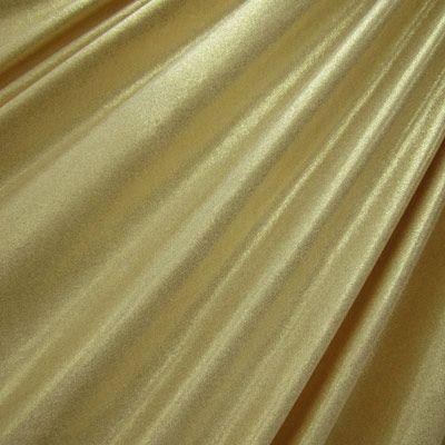 Metallic Slinky