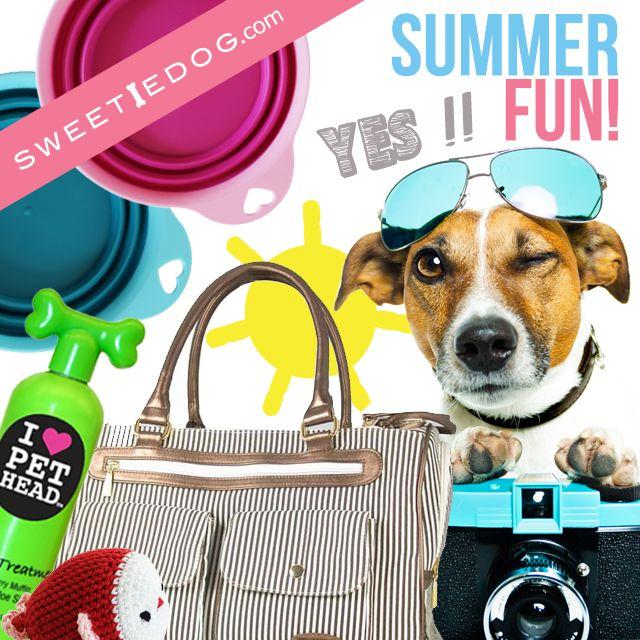 vacance chien - voyage chien - sac de voyage chien - jouet chien -  gamelle chien - shampooing chien pet head - dog summer - blog chien - www.sweetiedog;com