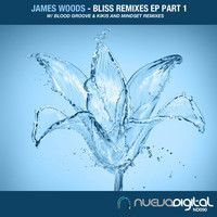 [ND090] James Woods - Bliss (Blood Groove & Kikis Remix) by NuevaRecordings on SoundCloud