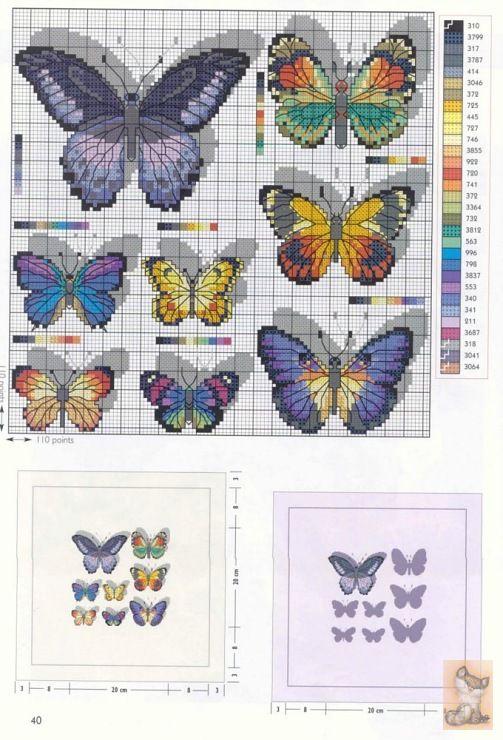 Gallery.ru / Фото #10 - бабочки - anapa-mama
