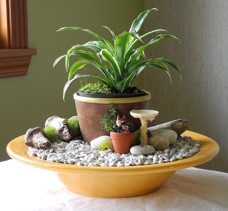 fast easy indoor miniature garden ideas for the black thumb