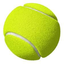 Webelos Activity Badge Ideas: Gathering Activity - Learning the scout law with a tennis ball