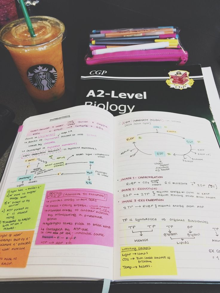 mylittle-studyblr:  biol4 went okay, I've seen worse papers but I feel like I could have done a lot better. sigh, only 5 more to go!