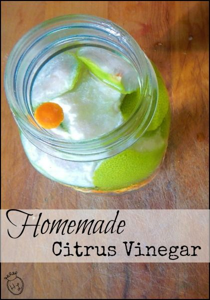 Homemade Citrus Vinegar l Laundry Wash and Natural Cleaner l Homestead Lady (.com)