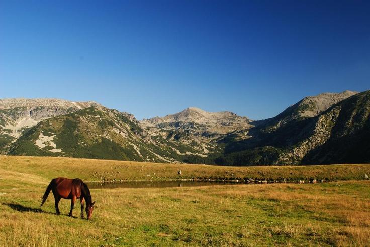 Retezat, Romania