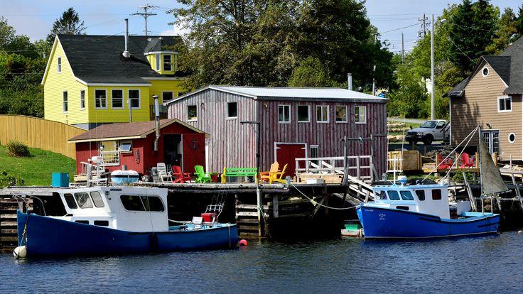 Saffron Blaze, Herring Cove, Nova Scotia