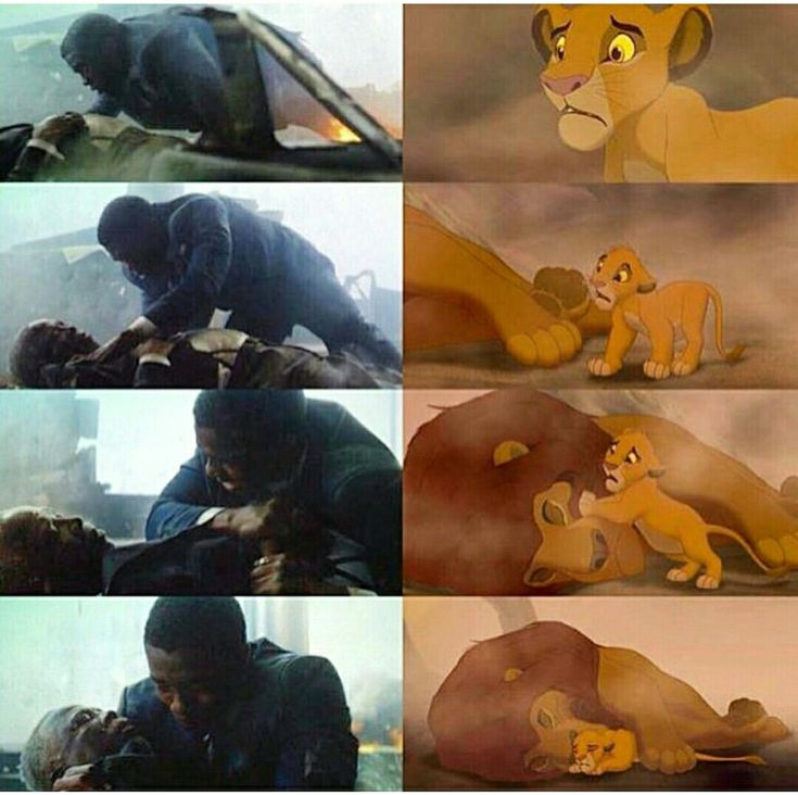 #blank_panthers #lion_king