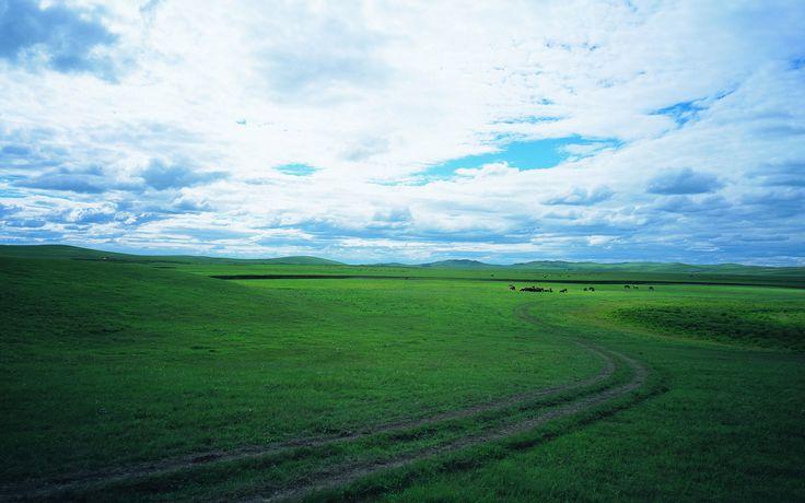 Grassland scenery wallpaper 22926 - Wallpapers landscape scenery ...