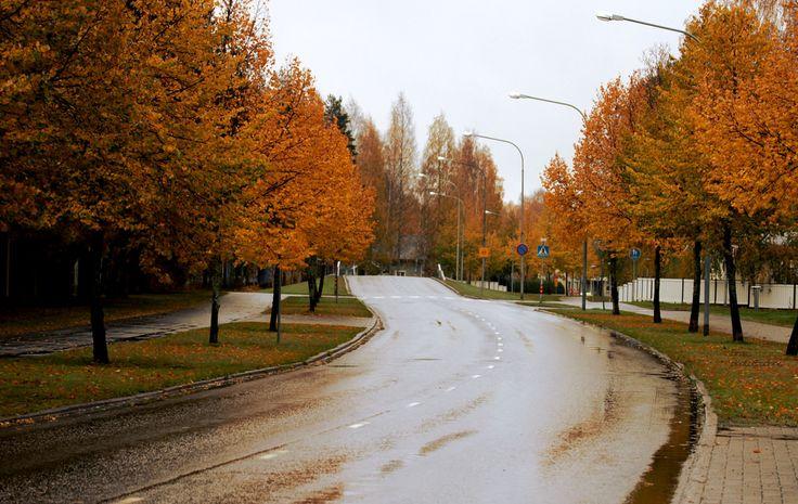 Rainy day | by Siniirr