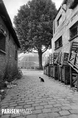 Paris (XIIème arr.). Entrepôts de Bercy. Impasse donnant sur la rue de Mâcon. Au fond : le palais Omnisport de Bercy. Juillet 1984.