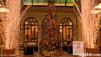 Plaza HotelNyc Winter, Buckets Lists, Oysters, Favorite Places, Hotels Holiday, Places I D, Plaza Hotels, Holiday Decorations, New York Hotels