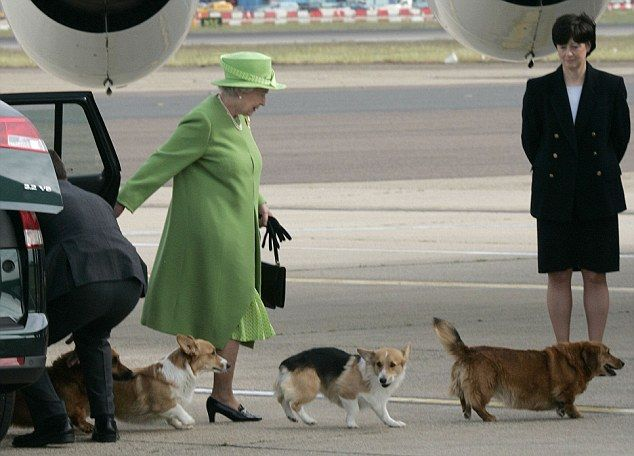The Queen's Corgis Holly and Willow, pictured closest to Her Majesty, have been a regular sight during her rule but she has ruled out introducing any new dogs.
