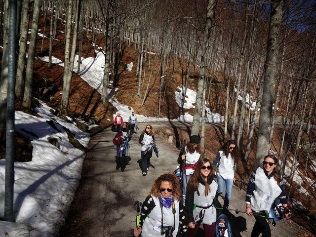 Siamo in Val di Luce, a pochi passi da l'Abetone, in un incantevole faggeto, accompagnati dalla guardia forestale e dal gruppo di organizzatori, a scoprire questa valle incantevole. Siamo vicino al Dynamo Camp, che seguiamo da anni con interesse. D