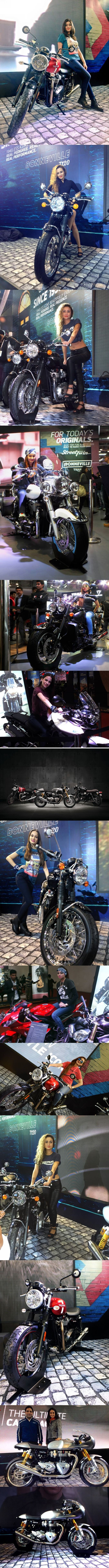 Bold and beautiful Triumph Motorcycles India from Hall No. 6