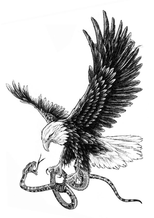 eagle tattoo infinity symbol where snake is eagle not detailed