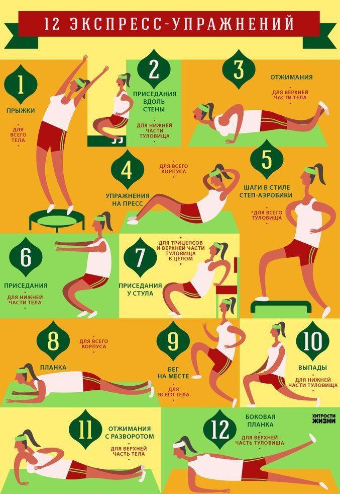 12 упражнений для стройности  Добиться идеальных форм поможет комплекс из 12 упражнений, в основе которого — краткость и интенсивность. На каждое упражнение нужно тратить не более 60 секунд, и, таким образом, на выполнение всего комплекса уйдёт около 7 минут. В составе гимнастики — приседания вдоль стены, прыжки, бег на месте с высоким подниманием колен, выпады, отжимания и отжимания с разворотом, а также приседания на стуле спиной к нему и другие.