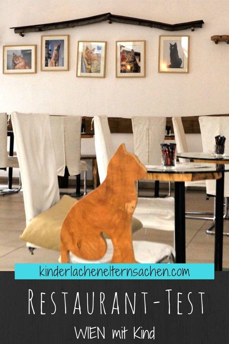 Wir waren in Wien und haben diverse  Lokale, Restaurants, Bars, usw auf ihre Familienfreundlichkeit getestet. Sind Kinder wilkommen? Gibt es Hochstühle, Wickeltische und Co .... und wie ist das Essen? Unter anderem waren wir auch im Katzencafe