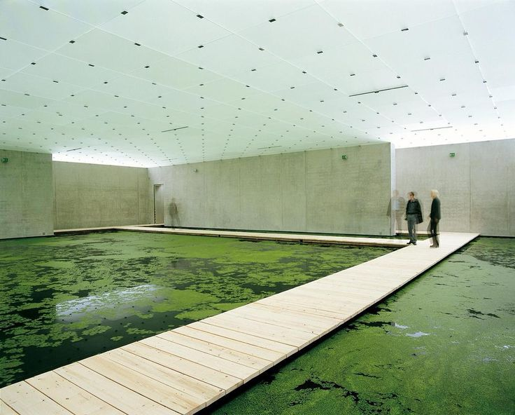 Olafur Eliasson - The Mediated Motion (in cooperation with Günther Vogt) 2001 #art #artdaily #artlover #contemporaryart #olafureliasson #gunthervogt #landscape #designer #space #installation #2001 #green #motion #austria #peterzumthor #pond #surface #duckweed #pontoons #nature #wall #catalogue #artist #inspiration #archive #arensbergarchive by arensberg_archive