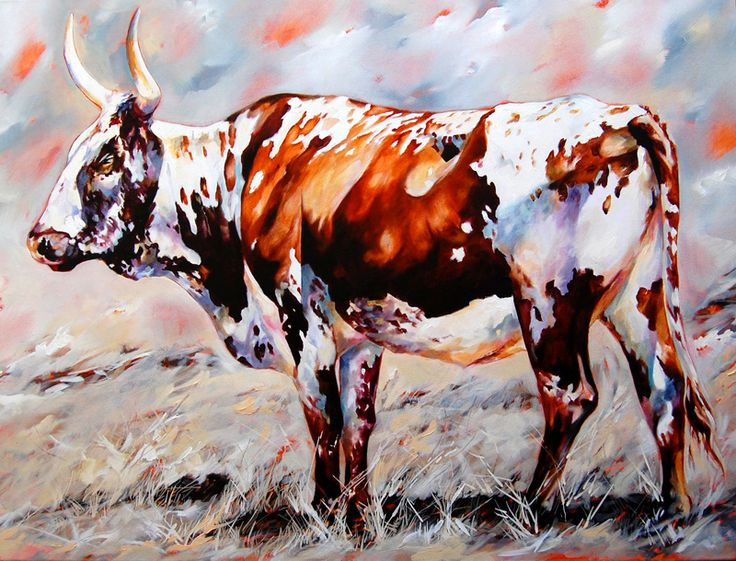 ORIGINALS GALLERY: Nguni Cattle