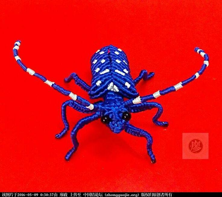 Macrame beetle 星天牛-编法图解-立体绳结教程与交流区-中国结论坛 -