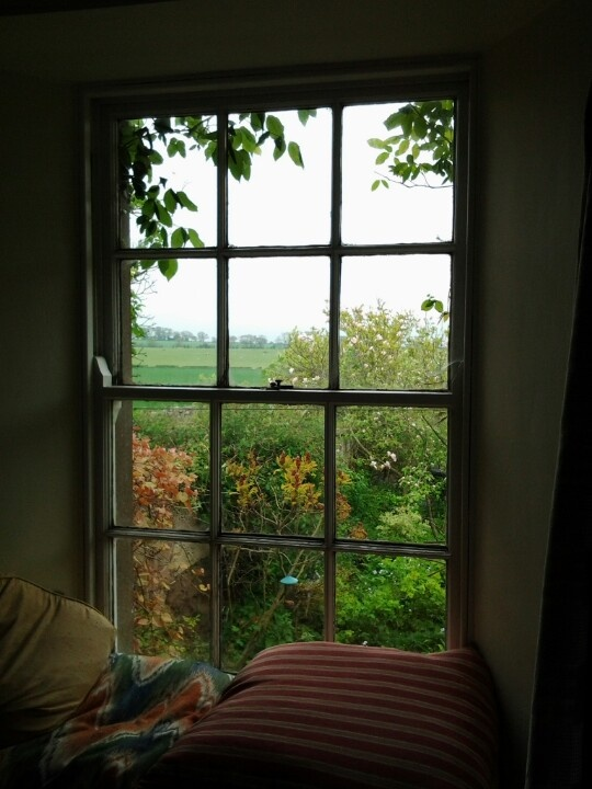 View through the window at the cottage.....