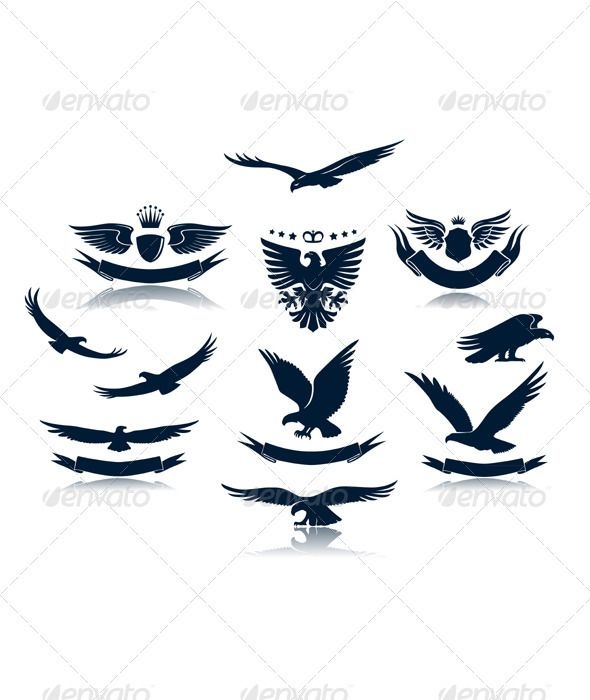 A set of eagles silhouettes — Photoshop PSD #bird #silhouette • Available here → https://graphicriver.net/item/a-set-of-eagles-silhouettes/2720317?ref=pxcr