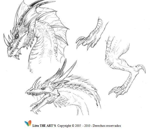 105 mejores imgenes de Dragones en Pinterest  Dragones