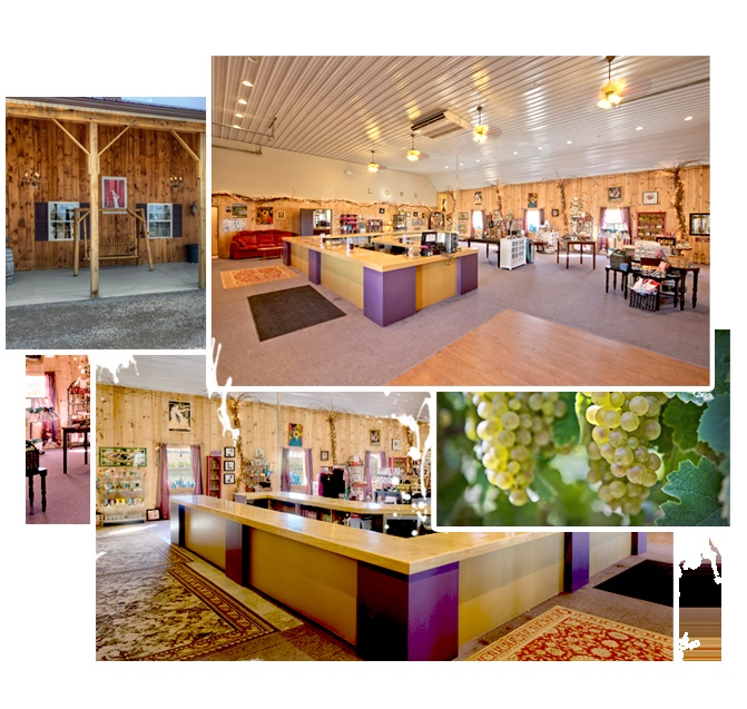 Passion Feet Vineyards and Winery- part of the Three Brothers Wineries tasting experience!