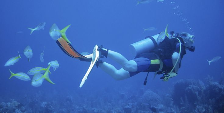 Open Water Diver Kurs Worms #Tauchurlaub #Tauchkurse #schnorcheln