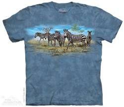 The Mountain Kids T-shirt | Zebra Gathering