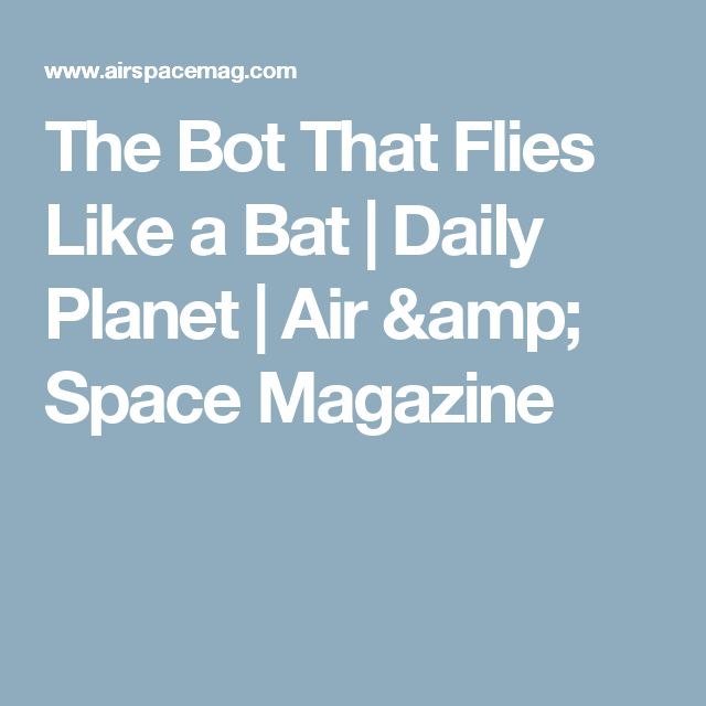 The Bot That Flies Like a Bat      |     Daily Planet | Air & Space Magazine