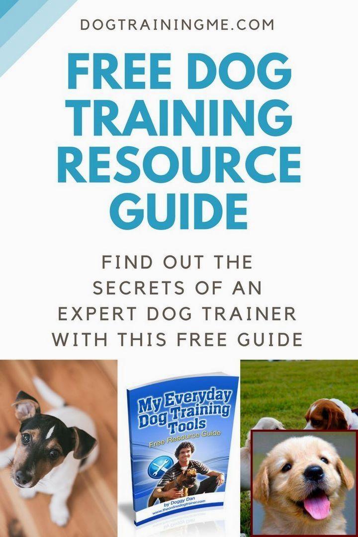 Dog Behavior Org And Clicker Training Dogs Potty Dogcommands